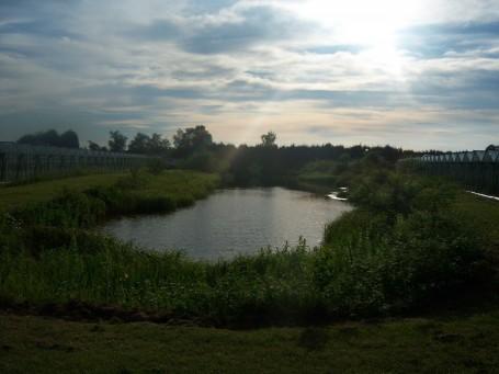 Roscarnick Farm